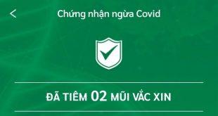 Cách tra cứu thẻ xanh, giấy chứng nhận tiêm chủng ngừa Covid-19